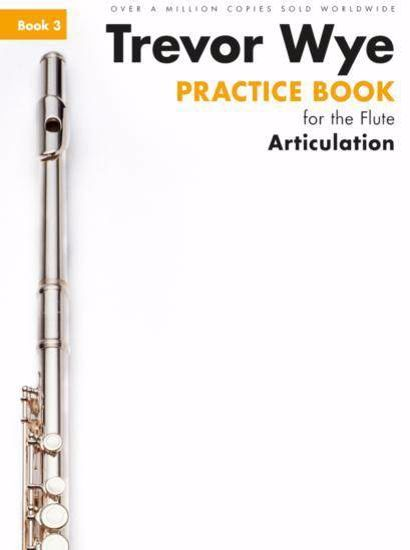 WYE:PRACTICE BOOK ARTICULATION 3