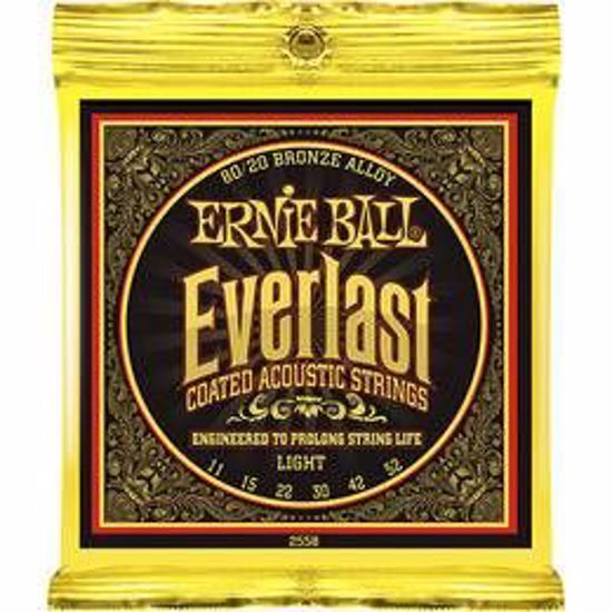 ERNIE BALL SET 2558 AK 011-052 EVERLAST COATED 80/20 BRONZE LIGHT