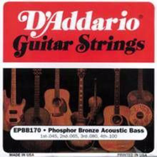Strune D'Addario acc. bas EPBB170  45-100 ph.br.