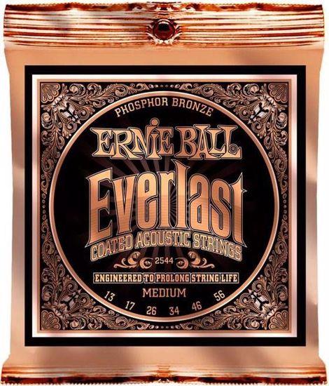 ERNIE BALL strune za akustično kitaro SET 2544 013-056 EVERLAST COATED