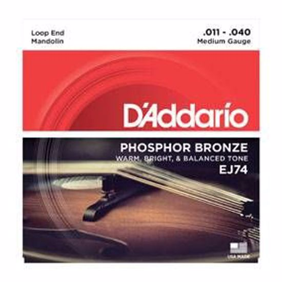 Strune D'Addario mandolina EJ74  11-40 ph.br.