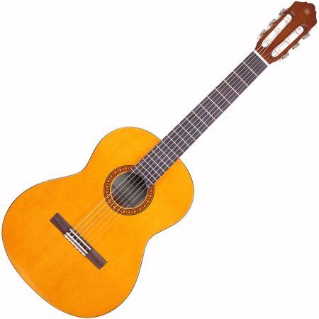 Slika za kategorijo Klasične kitare 3/4