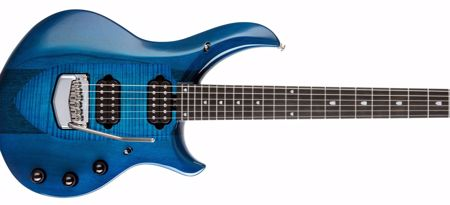 Slika za kategorijo Signature kitare