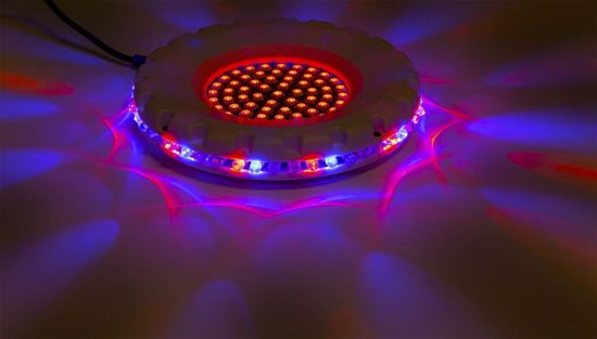 MAX Spinning Sunflower with 61 centre LEDs