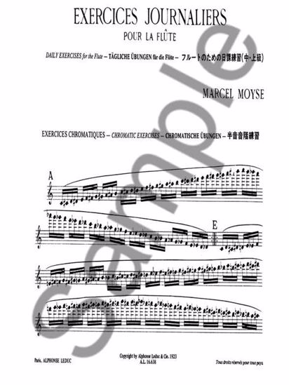 MOYSE M.:EXERCICES JOURNALIERS/DAILY EXERCISES FOR FLUTE